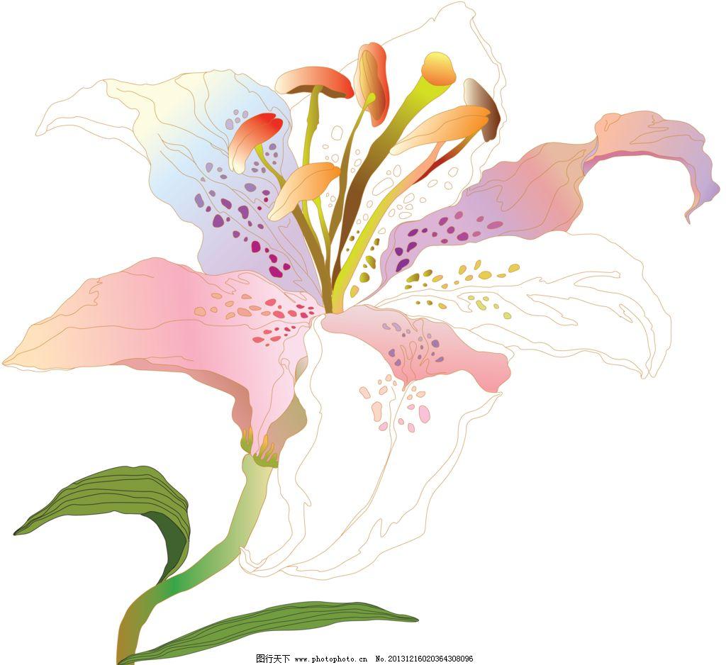 百合 百合移门 百合图案 手绘花纹 精美花纹 手绘花朵 移门花纹 欧式