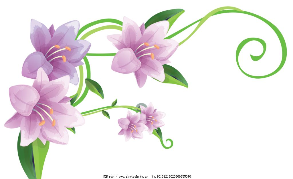 百合花纹 百合 百合花藤 百合移门 百合图案 紫百合 手绘花纹 精美