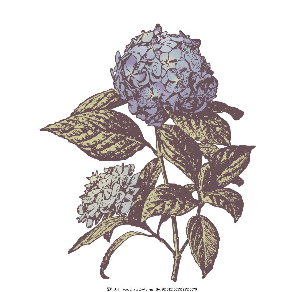 复古手绘花卉 复古 手绘 花卉 素材 花 花草 生物世界 设计 28dpi png