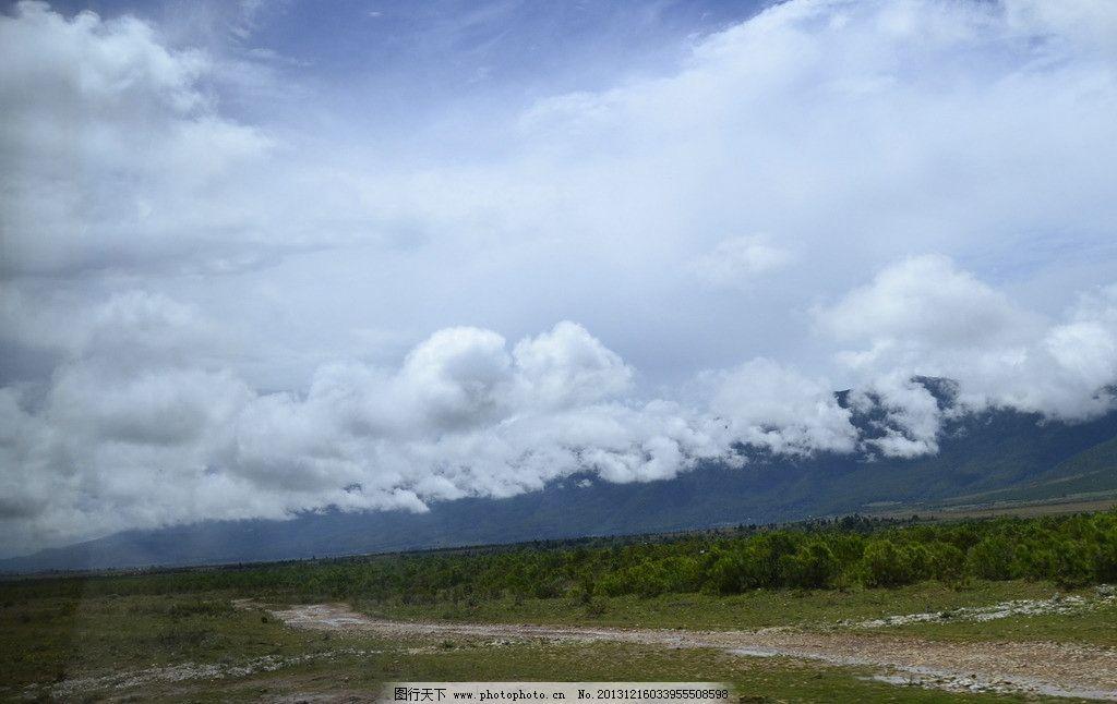 美丽风景 美丽 风景 漂亮 白云 蓝天 森林 大树 云南 旅游 摄影 国内