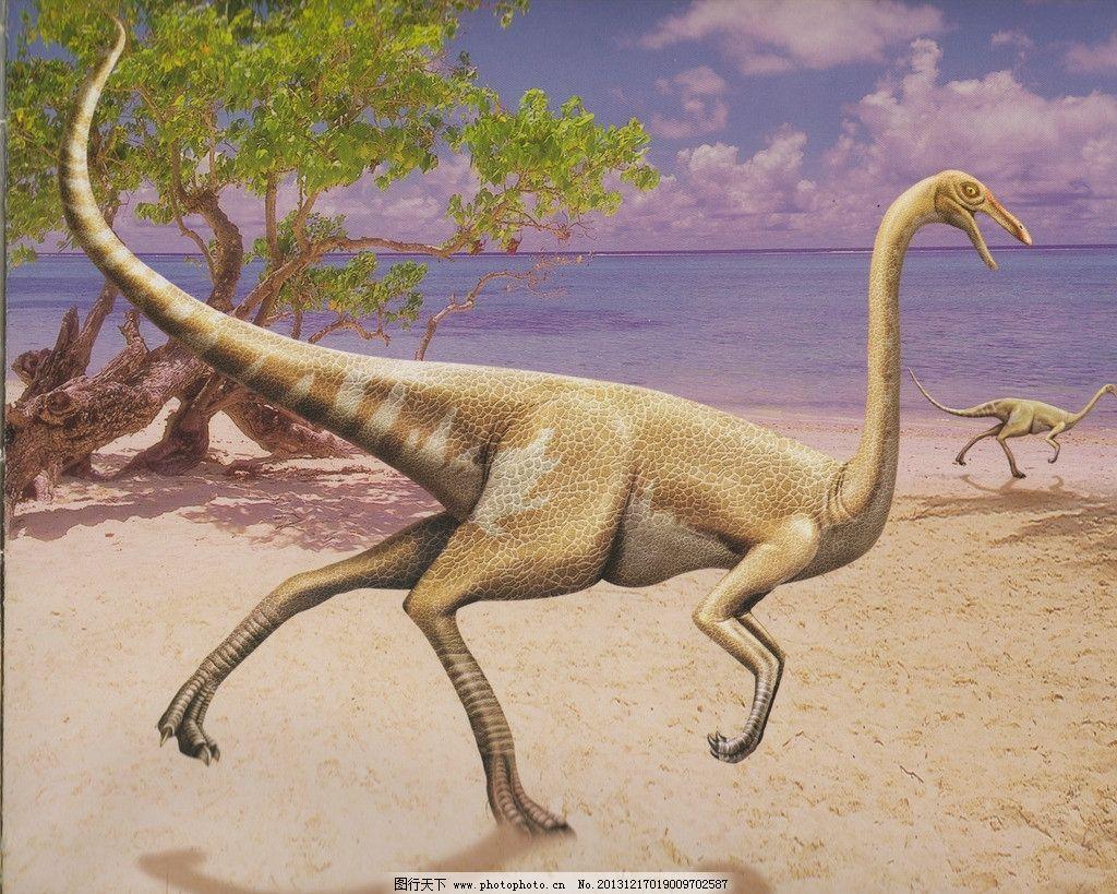 壁纸 动物 恐龙 蜥 蜥蜴 1024_819