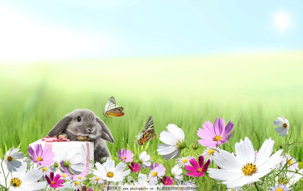 psd分层 其他  清新萌兔壁纸 桌面壁纸 草地 鲜花 蝴蝶 兔子 可爱动物