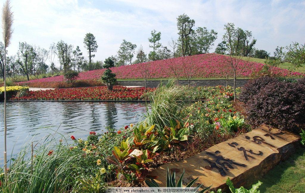 园林植物造景 园林 配置 公园 景观 植物 其他 建筑园林 摄影 300dpi