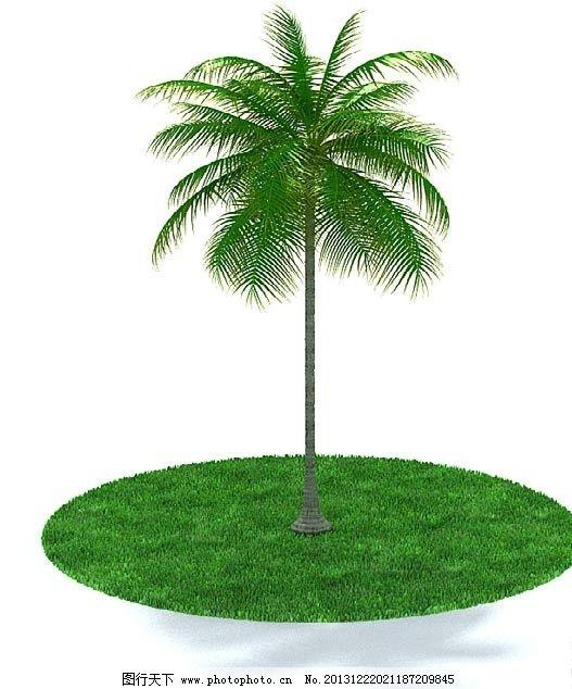 树木 花 植物模型 盆栽模型 环境美化 模型 室内盆栽与景观树木模型