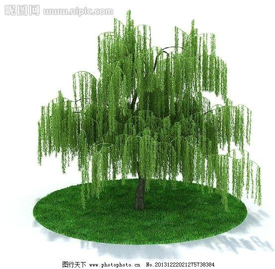室内盆栽与景观树木模型