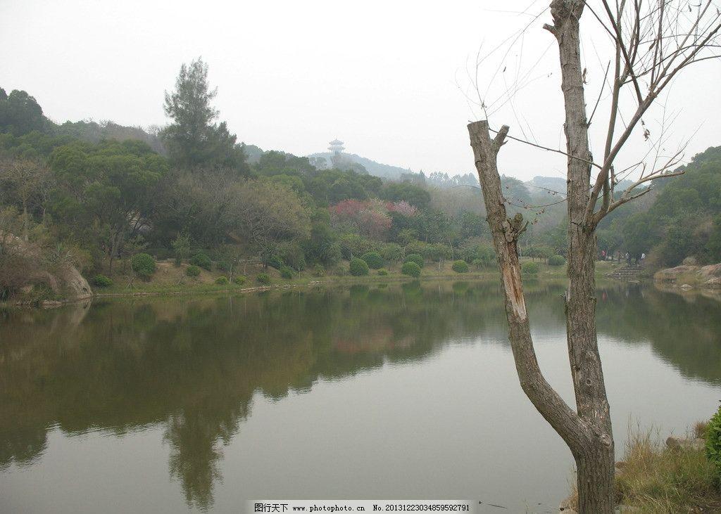 泉州森林公园图片图片