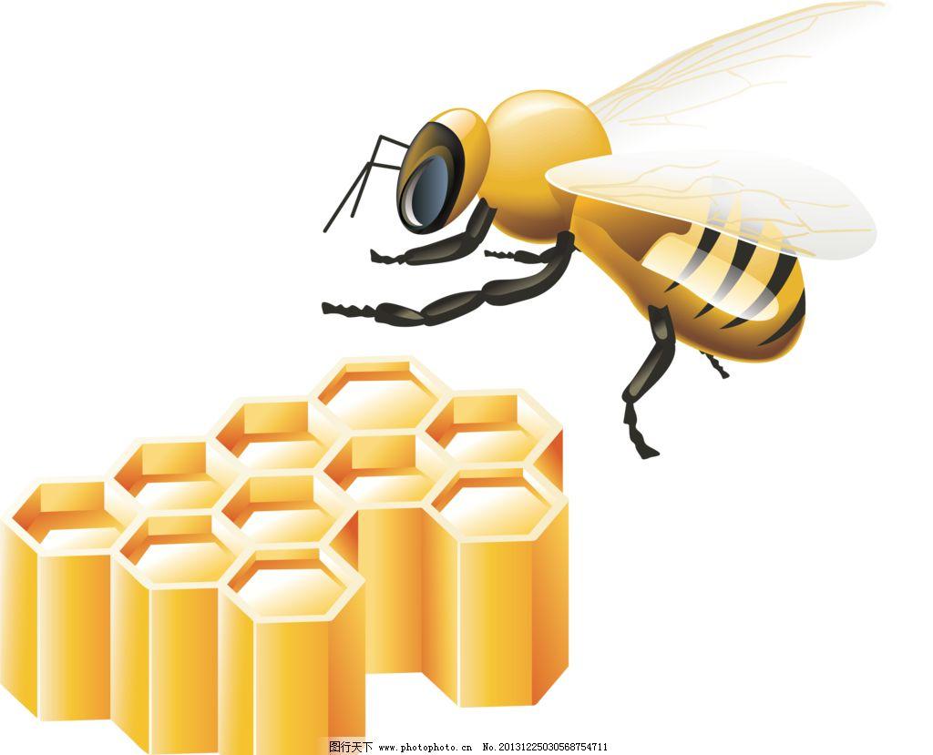手绘蜜蜂图片