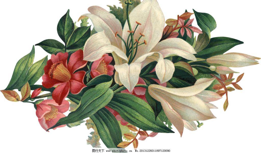 蝴蝶 百合移门 百合图案 手绘花纹 精美花纹 手绘花朵 移门花纹 欧式