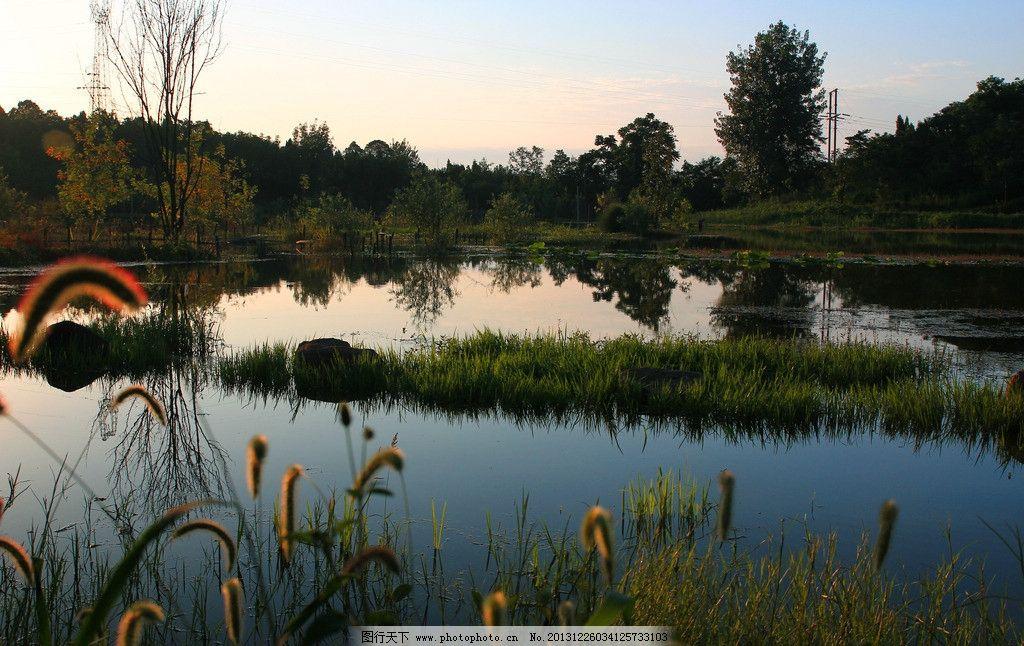 白马湖晚霞 湖水 树林 小树 大树 杂草 石头 天空 阳光 倒影 自然风景