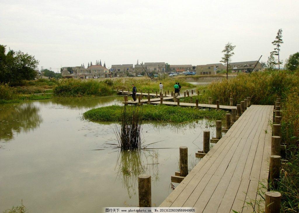 木栈道 湿地 公园 园林 景观 园林建筑 建筑园林 摄影