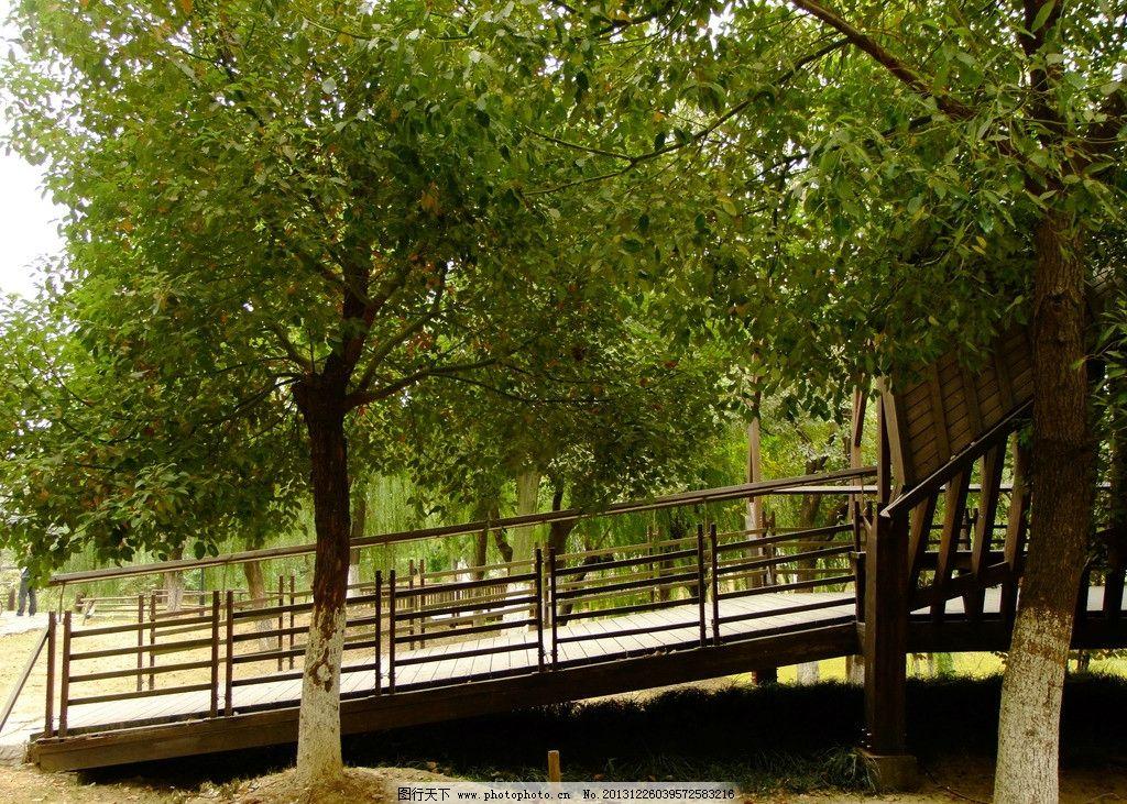 木栈道 观景 公园 园林 景观 园林建筑 建筑园林 摄影 72dpi jpg