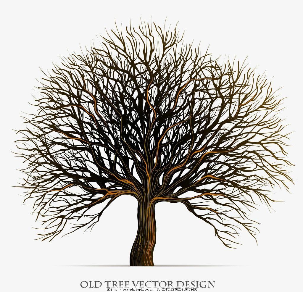 树木图片_树木树叶_生物世界_图行天下图库