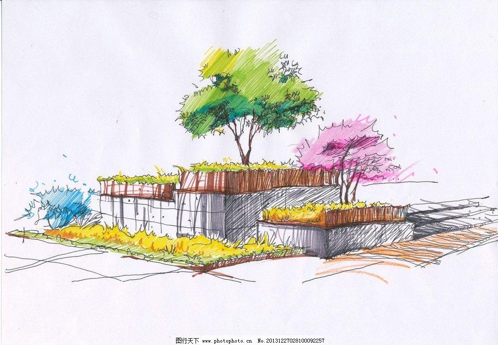 手绘植物 景观 手绘 植物 单体 植物组 景观设计 环境设计 设计 96dpi