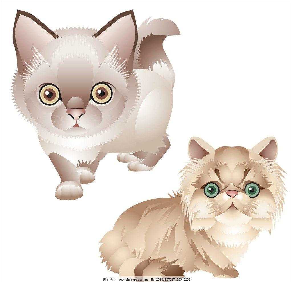 小猫 动物 可爱猫 猫咪 卡通 手绘画 插画设计 矢量卡通设计图片