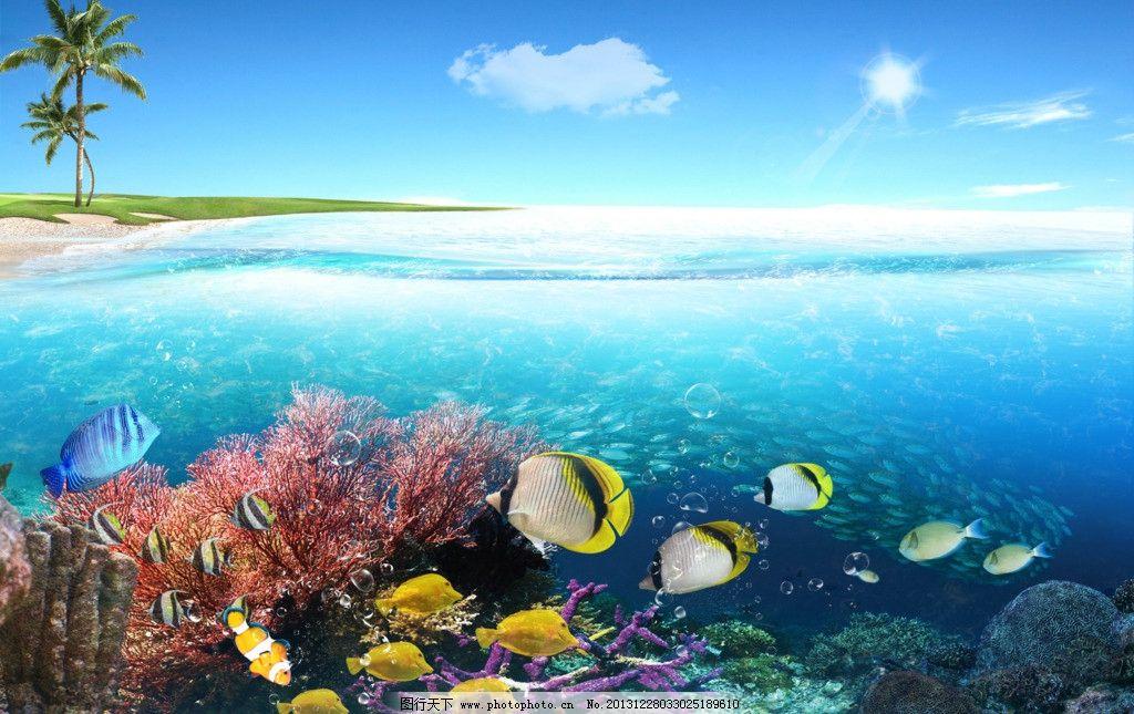 海洋 保护环境 蓝色 蓝色海洋 珊瑚礁 海鱼 环保 蓝色主题 环境保护图片