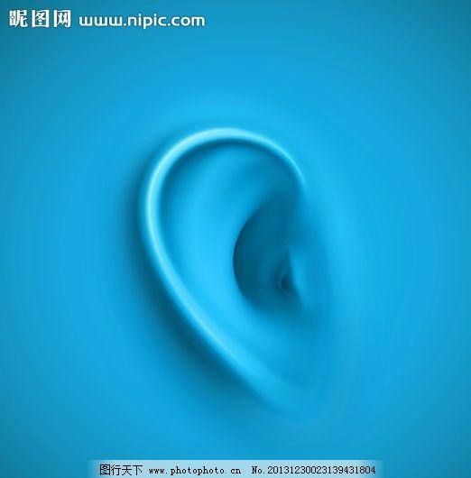 耳朵 五官设计 人类 人体 人类五官 器官 矢量设计 广告设计